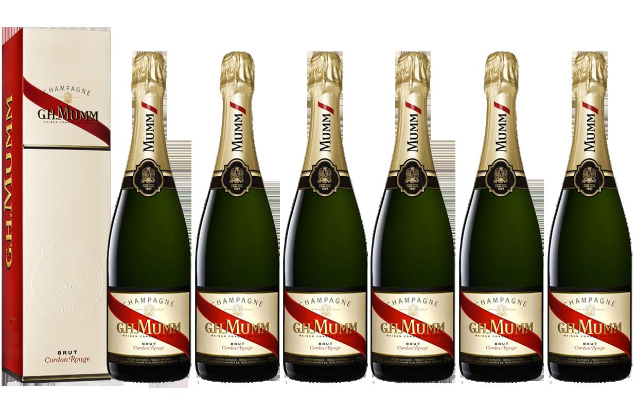 Lot 6 Champagnes Mumm Brut Cordon Rouge 75cl avec étui